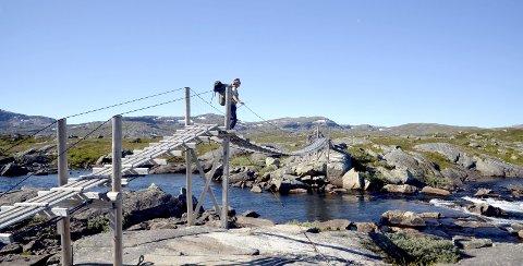 UTSYN: En luftig hengebro gir godt utsyn.