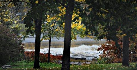 FORVENTER MYE REGN: Fram til tirsdag kan det komme mye regn i Kongsberg og Numedal. Over 2.000 meter vil det komme som snø.