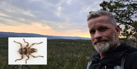 EN PLAGE: Trond Wium ble overfalt av et stort antall hjortelusfluer på tur i Drammensmarka. Da han tok kaffepause her på Tverråsen ble han sittende og plukke av seg hjortelusfluer.
