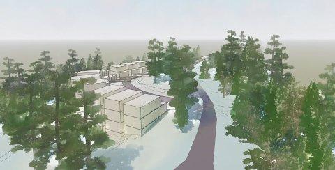 Bolig mellom trærne: Boligprosjektet i Lyfjellveien tar sikte på å bygge uten å fjerne flere trær enn de trenger, for boligene skal ligge mellom trærne.