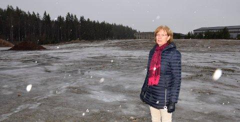 EGNET: Utviklingsdirektør Ellen Grønlund mener at denne tomta ved E16 bør være godt egnet for bilsalg.