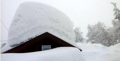 Snøtungt: Mange tak har stor snøtyngde og verre blir det når snøen blir våt. Det er smart å ta det alvorlig. (Foto: Joar Lofthus)