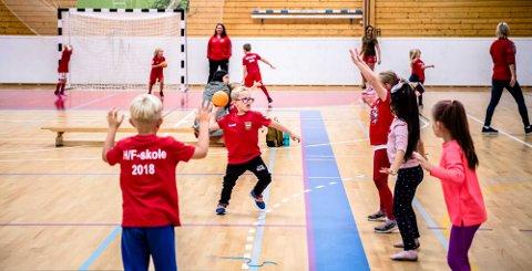 INGEN NATTHÅNDBALL: Det populære arrangementet Natthåndball i Nordby er avlyst på grunn avv korona. Det betyr tapt aktivitet og inntekter for Nordby IL, sier daglig leder Thor Ringstad.