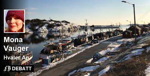 – Med en stor og dyktig aktør som Borg havn til å forvalte havna har vi stor tro på fremtidens næringsutvikling i Utgårdskilen, skriver Mona Vauger. Innsendt bilde