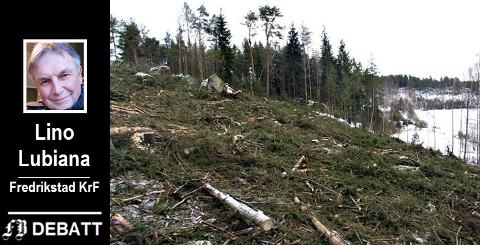 Rask skogplanting er ett av  tiltakene Kristelig Folkeparti vil ha inn i planen for redusere karbonutslipp i Fredrikstad.