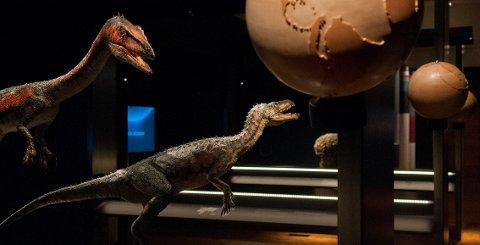 Dinosaurmodeller i den nye geologiutstillinga TELLUS.