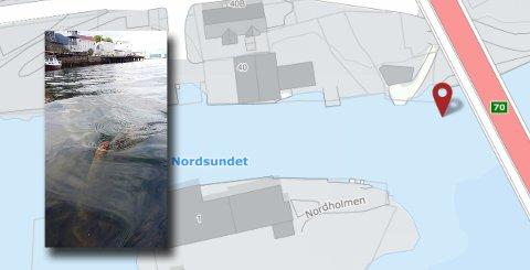 Et ødelagt sjømerke kan være til fare for båttrafikken.