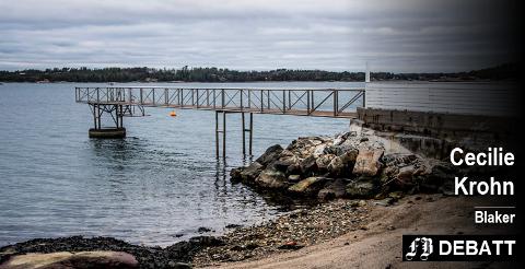 – Hvis en stenmolo og sement oppleves som fremmedelementer i strandsonen, da er det en del bryggeeiere langs Krogstadfjorden dere må ta en prat med, skriver Cecilie Krohn.