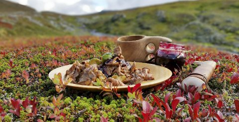 Rådyrskavgryte: Det aller beste med å være ute i naturen er matpausen, mener kokken.