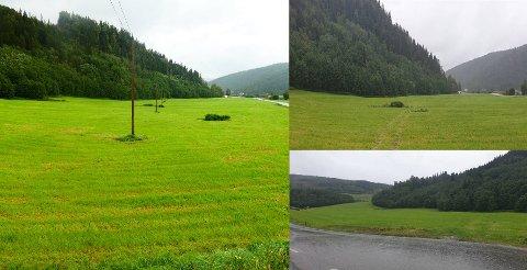FØR OG ETTER: Det store bildet til venstre viser hvordan det så ut med telestolper på et jorde i Trøndelag før alt ble fjernet for en tid siden. De andre bildene viser hvordan det ser ut etter at stolpene er fjernet.