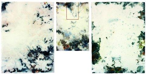 I KAUNAS: TrondE er representert i Baltic Bridges med arbeidet «Imagination of Winter». Samlet er de tre akvarellene 154 centimeter brede og nesten 70 centimeter høye.