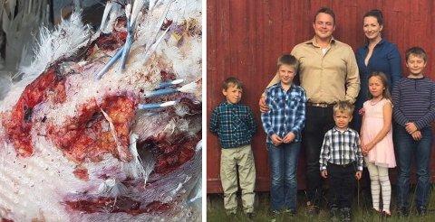 FAMILIEGÅRD: Ørjan Skogmo, Helene Larsen og de fem barna ved fjøset på gården. Mandag rammet dyretragedien da løshunder angrep fuglebesetningen. Foto: Privat
