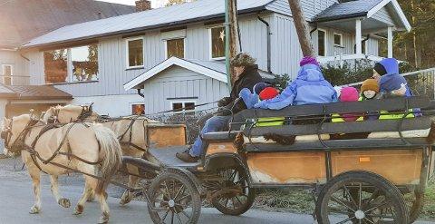 UT PÅ TUR: Alle barna fikk en eksklusiv tur med hest og vogn i nabolaget. Kusk og eier Jens Peder Nielsen er kjent fra turene som går hver sommer på Fossesholm. FOTO: HILDE HARVIK SOLUM