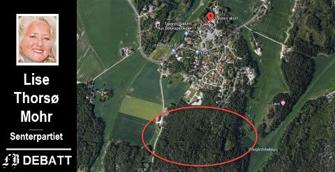 Lise Thorsø Mohr forstår ikke MDGs motstand mot boligfeltet Veelsmyra syd (innringet område). – Midt i smørøyet med kort gangavstand til skole, barnehage og butikk, skriver hun. Det røde merket viser hvor Torsnes skole   ligger.