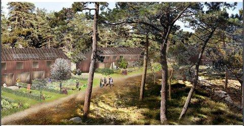 Utbyggerne så for seg hytter i flere tun: Dette er en av skissene som ble lagt frem i vår. (Illustrasjon: Fra planinitiativ for Bevø hyttefelt)