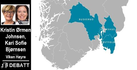 –  Dagens fylkesstruktur er utdatert. Når det gjelder transport og kollektivløsninger må vi få et effektivt og miljøvennlig system - fra Hallingdal til Halden, heter det i innlegget.