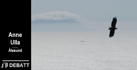 Brevforfatter Anne Ulla har selv fotografert denne havørnen i området der hun frykter at vindturbinene blir et stor trussel mot fuglelivet.