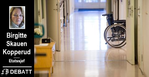 Etatssjefen skriver at kompetanse og rett bruk av ressurser er viktig i  arbeidet for en god sykehjemstjeneste. I 2019 er det gjennomført 388 møter om verktøyet VIPS. Hun forklarer i innlegget hva dette står for.