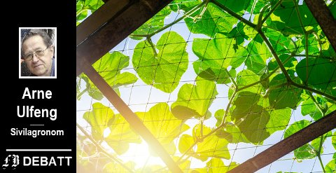 – Vår klodes viktigste naturprosess. Naturens evighetsmaskin, skriver Ulfeng om prosessen som skjer i planter og alger og som trenger sollys og karbondioksid.