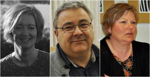 BARNEVERN: Anita Rørvik i Jevnaker, Øystein Zahl Einarsen i Lunner og Tone Gulbrandsen i Gran forteller om hvordan barnevernet opplevde koronastengingen.