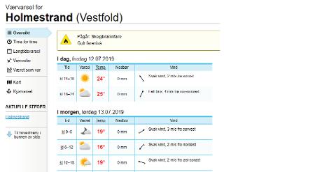 ØKENDE: Farenivået for skogbrann er økende på Østlandet, og i Holmestrand er det nå på gult hvor rødt er høyeste.