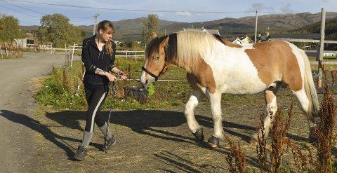 Fluktdyr: Hesten er følsom, og i utgangspunktet et fluktdyr. Her er det hestepasser Tora Ryan som tar hånd om «Tamlin». Foto: John-Arne Storhaug