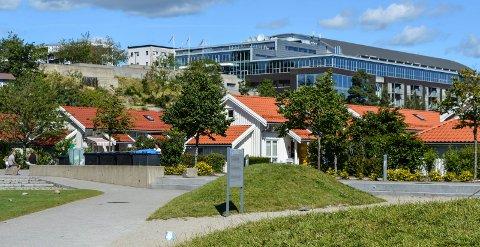 BRUNSTAD: Kirkesamfunnet BCC har hovedkontor på Ryen i Oslo, og de internasjonale stevnene på Oslofjord Convention Center (bildet) på Brunstad i Stokke.