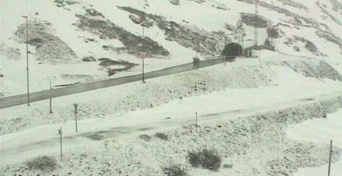 Slik så det ut på E134 over Haukelifjell, torsdag morgen. Foto: Statens vegvesens webkamera