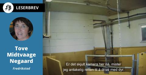Bilde fra de hemmelige opptakene som var grunnlag for NRK Brennpunkts program. Bonden ble ikke fradømt retten til drive med dyr, slik han fryktet ifølge egen uttalelse i programmet.