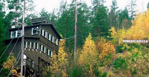 BORTE: Hannibalbakken mister definisjonen kulturanlegg i Kongsberg kommunes planverk.