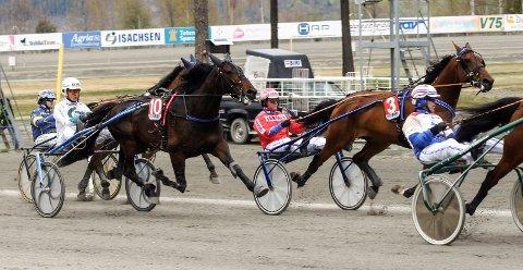 QUITE PEPPER (10) tok en ny seier med kusk Hans Chr. Holm på Drammen travbane lørdag. Arkivbilde: Øystein Edvardsen