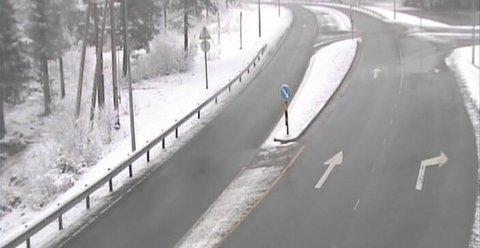 BART: Natt til mandag la snøen seg på riksveg 4 opp mot Lygnasæter, men rask respons fra entreprenør gjorde at det ikke skapte problemer for trafikken. Her fra webkamertaet til Statens vegvesen klokken 6 mandag morgen.