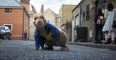 PETTER KANIN 2: Petter kanin, kjent fra NRK Super er heftig godt laget animasjon i kobling med real image fra England, med norske stemmer.