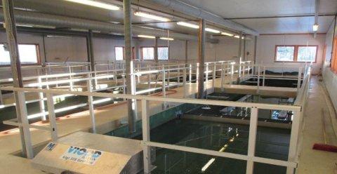 KREVER RENOVERING: Aurdal renseanlegg er gammelt og slit og trenger oppgradering.