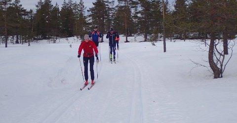 Mange skiglade benyttet de glimrende skiløypene i Tverråsrunden i Drammensmarka lørdag.