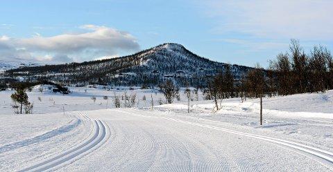 TRIKKESKINNER: Nydelige løyper mandag morgen på Dagalifjell. FOTO: CHRISTIAN MAUNO.