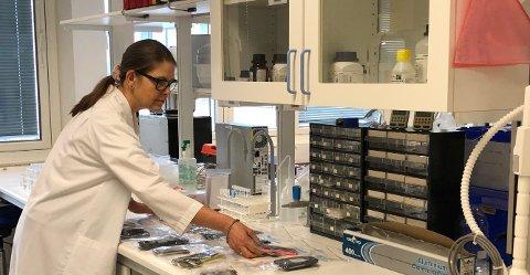 UNDERSØKER: Hilde Uggerud, forsker ved NILU.