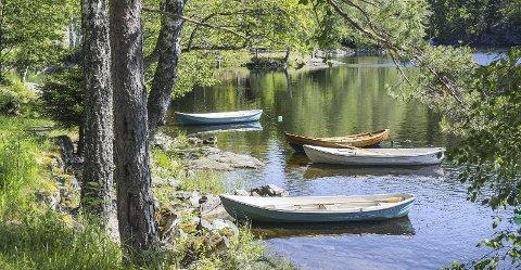 FRED OG RO: For å nå Rausjø må du ta en rusletur på grusveien fra Bysetermåsan. Her ved enden av sjøen er det også en fin badeplass og du kan sette opp et lite telt i utmarka eller strekke opp hengekøya i et tre.