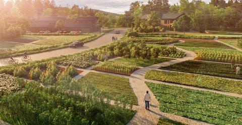 SUNDBY-GJØMLE: Slik ser Heimgard Bolig for seg at boligområdet på Sundby-Gjømle kan bli, med en småhusbebyggelse med ulike boliger og grøntområder. Det foreslås at beboerne kan lage seg parsellhager. Turstier og gangstier er vesentlige.