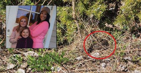 ADVARER: Ida Myhre og døtrene Live (7) og Leah (11) har sett mange hoggorm på tur. Nå advarer de andre.