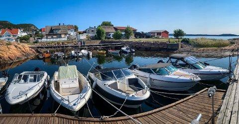 BÅTTYVERI: Båttyveriene skal ha funnet sted ved Tofte båthavn natt til fredag.
