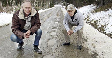 VANN I VEIEN: – Så fort det kommer ei regnskur er Mitandersforsveien bare hull og gjørme, sier Erik Varildengen (t.v.) og Jack Johansen. De er to av oppsitterne som har kjempet for bedre vei i mange år.BILDER: SIGMUND FOSSEN