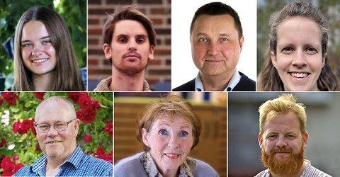 PÅ LISTENE: Dette er de lokale kandidatene fra de største partiene som stiller til valg i Buskerud. Øverst fra venstre: Hanna Linnéa Lindtvedt (V), Anders Lid (Krf), Eilev Bekjorden (Frp), Kristin Kvadsheim (Rødt), Sigve Brouwer (MDG), Kari Anne Sand (Sp) og Njål Vigleik Grene-Johnsen (SV).