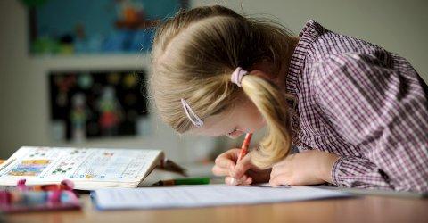 Kunnskap: – Istedenfor å vurdere fjerning av lekser, bør man heller fokusere på hvordan skolen kan tilrettelegge for økt leksebevissthet hos lærere, og utvikle kompetansen i bruk av digitale læringsverktøy, skriver Lars Kristian Furuheim.