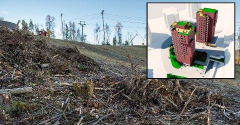 FEIL: – Påstanden om at Gjøvik kommune har gitt bort flere titalls millioner til selskapet Hovdetoppen utvikling AS, er  direkte feil, skriver Even Solhaug.