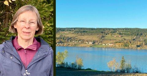 BREV TIL HAREIDE: Naturvernforbundet advarer mot ny motorvei på vestsiden av Einafjorden: – Oppstykking av natur er hovedårsaken til tap av biologisk mangfold, sier Heidi Kristioffersen.