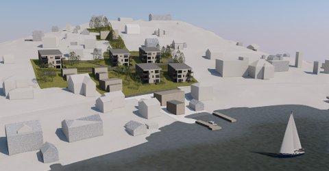 STOR SATSING: Slik kan det nye private byggjefeltet i Balestrand bli sjåande ut. Planen inneheld 30 leilegheiter og fleire bustadtomter.