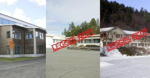 Tre TIL EN: Får rådmannen det som hun vil, blir både Gjerstad skole og Fiane skole lagt ned. Nå er det opp til kommunestyret, neste torsdag, å bestemme seg.Foto: arkiv / montasje
