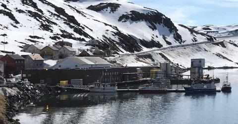 Håper på flere båtplasser her: Dan Arne Krøysert ønsker å etablere seg som fisker i Kamøyvær. Til det trenger han en trygg plass å legge båten sin. Er det virkelig ingenting som kan gjøres? Spør han.
