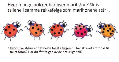 OPPGAVE 12: Hvor mange prikker har hver marihøne? Skriv tallene i samme rekkefølge som marihønene står i.